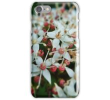 Garden flowers in bloom iPhone Case/Skin