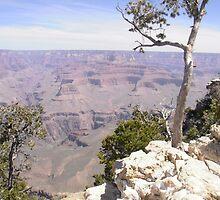 Grand Canyon 1 by MjMYWorld