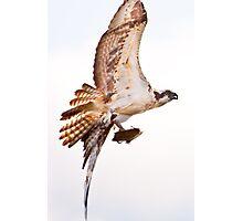 Nice Catch! Photographic Print