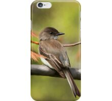 Eastern Phoebe Flycatcher - Photo Painting iPhone Case/Skin