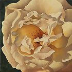 Open Cream Rose by Martha Mitchell