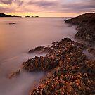 """Precambrian Sunset"" by Husky"