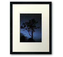 Nite 24 Framed Print