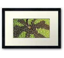 Begonia Rex Leaf Detail  Framed Print