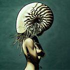 The Nautilus. by James Fosdike