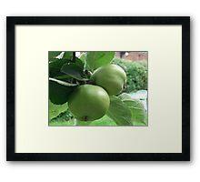 Juicy Apple's Framed Print