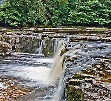 Aysgarth Falls #1 by Imaginato