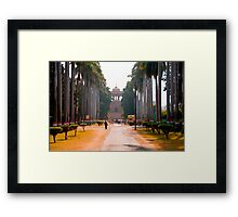 Treelined Entry To The Tombs Framed Print