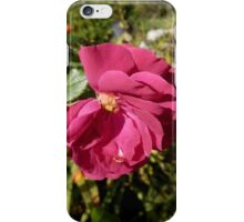Final Bloom iPhone Case/Skin