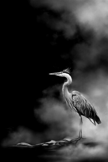 Heron in the Mist by Renee Dawson
