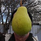It Has All Gone Pear Shaped by Gregory John O'Flaherty