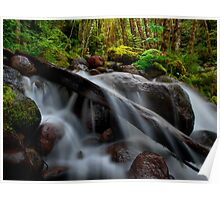 Falls At Canyon Creek Poster