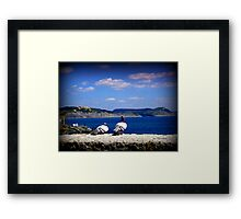 Pigeons Looking out to Sea Framed Print
