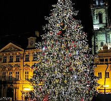 Christmas tree in Prague by Ingvar Bjork Photography