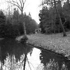 Winter Lake by ivanfeltonglenn