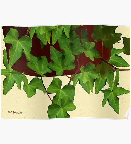 Ivy in Russet Pot Poster