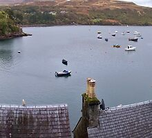 The Harbour at Portree on the Isle of Skye by Terry Senior