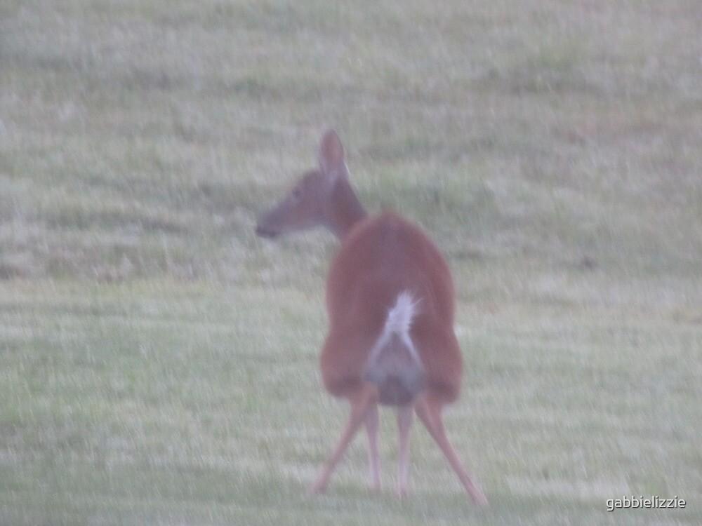 oh deer! by gabbielizzie