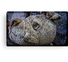 meaner than a junkyard dog Canvas Print