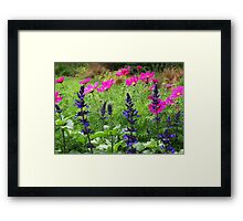 Colourful and Bright  Framed Print