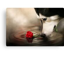 Dog with Rose  Canvas Print