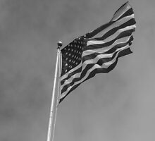 Windy Stars And Stripes by D.M. Mucha