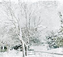 Snow Fantasy by Susan Werby