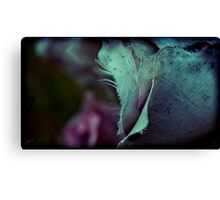 leading edge Canvas Print
