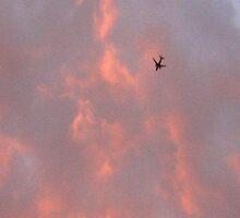 Fire............. by WhiteDove Studio kj gordon