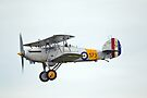 Hawker Nimrod 1 S1581 by Nigel Bangert