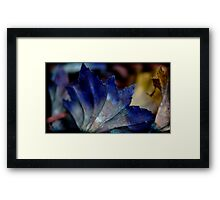 fade to white Framed Print