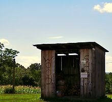 Wood Shed by Chuck Chisler