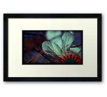 in the dusk they blossomed Framed Print
