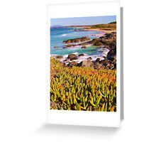 pigface by the beach Greeting Card