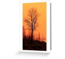 Red Tree Orange Sky Greeting Card