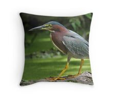 The Duckweed Is Always Greener On The Other Side / Green Heron  Throw Pillow