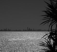 View to Surfers Paradise by rebeccajane