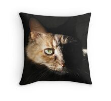 DeLenn II Throw Pillow