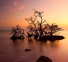 Florida Keys Sunset by DawsonImages