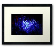 Blue Christmas Ice Framed Print