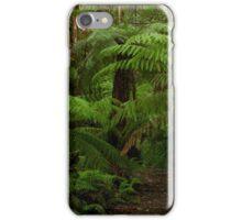 Ferny Walk  iPhone Case/Skin
