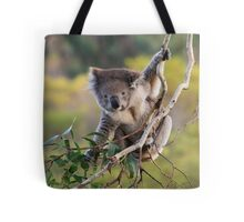 Hanging Around ... Tote Bag