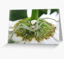 The Under Stand Greeting Card