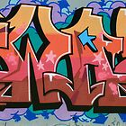 Graffitti Street Art #2 West Burleigh by aussiebushstick