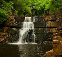 Waterfall steps, Bowlees Beck, Durham,England by Ian Alex Blease
