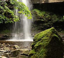 Summerhill Force, Bowlees Beck, Upper Teesdale England, FT 6  by Ian Alex Blease