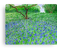 Spring Bloom spread Canvas Print