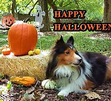 Sheltie Halloween by jkartlife
