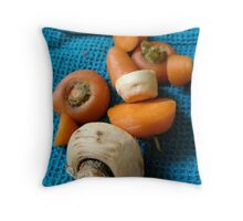 KITCHEN LONDON 8 BLUE ORANGE SHADE OF PALE  Throw Pillow