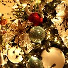 Christmas Decorations on the Tree by Douglas E.  Welch